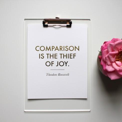 comparison.roosevelt.