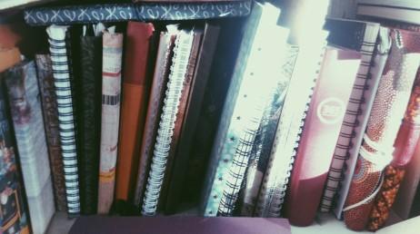 tagebücher.